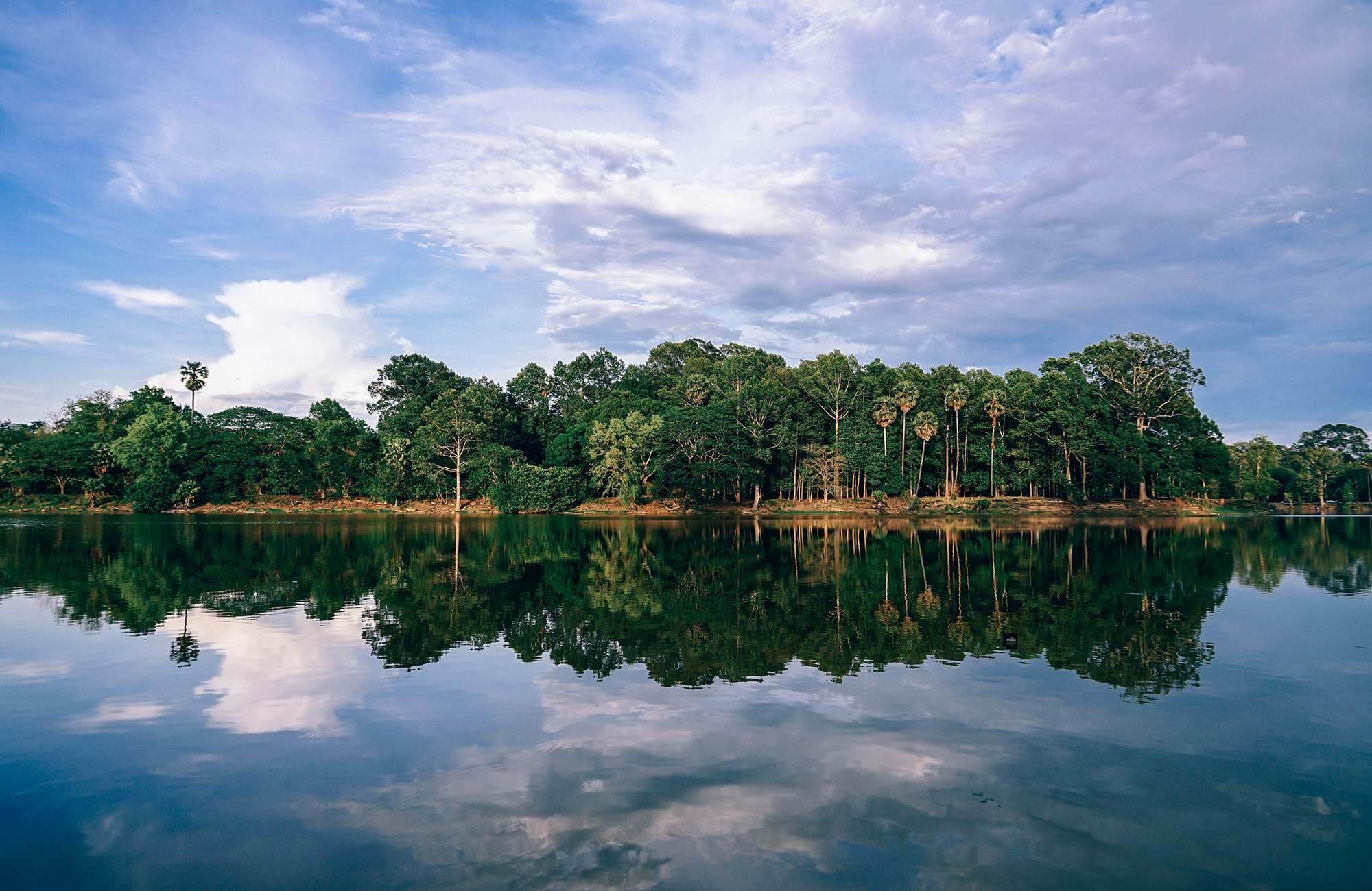siem-reap-cambodia-forest-waterside-cover